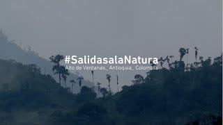 #SalidasalaNatura_ Alto de Ventanas_  La Selva