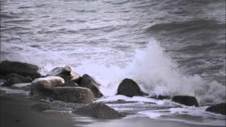 Comme la mer - Jean-Jacques Kira