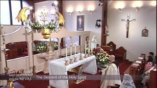 Holy Rosary and Devotions with the Franciscan Missionaries of the Eternal Word - 2021-05-16 - Holy R