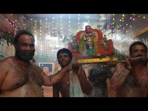 Padur Sri Prasanna Venkatesa Perumal - Brammothsavam 2017 - 9th day Thiruther-Pathi Ulathal