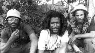 Cedric Myton & The Congos - Sinking Ship