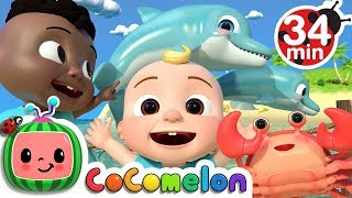 Sea Animal Song + More Nursery Rhymes & Kids Songs - CoComelon