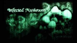 Infected Mushroom In Front Of Me