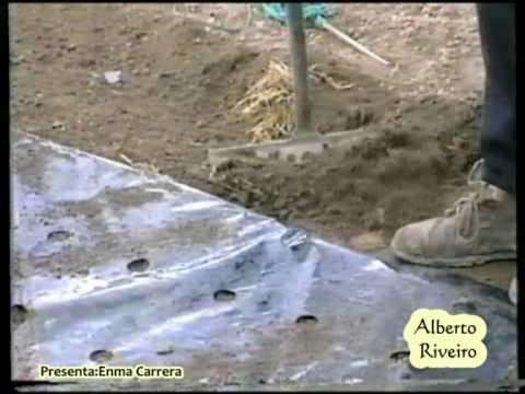 Plantar cebollas bajo pl stico con alberto for Bordillos de plastico para jardin