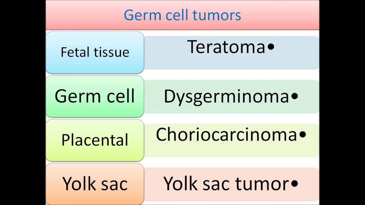 Ovarian Tumors Youtube