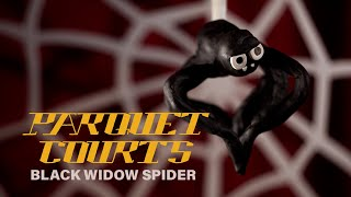 "Parquet Courts - ""Black Widow Spider"" (Official Music Video)"