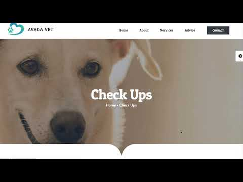 PET   Web Design   Veterinary Clinic