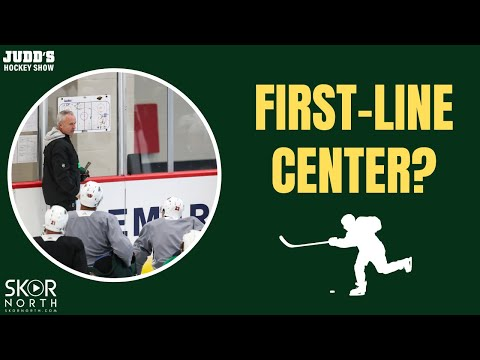 Minnesota Wild roster and line charts for season opener