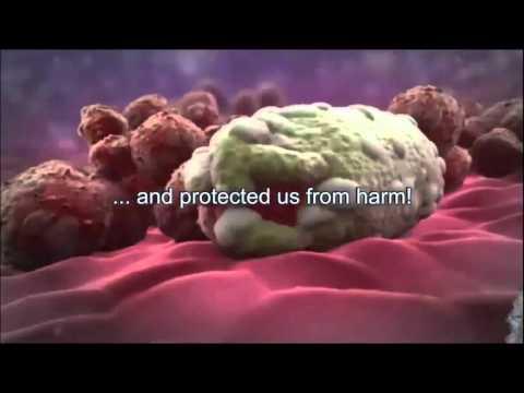 ATP - Adenosine Triphosphate - Innercellular Energy