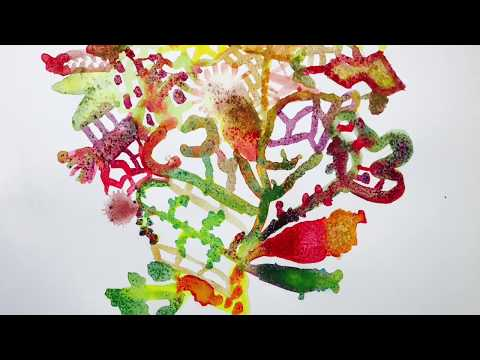 Flower Bouquet / Jang Ian ( 7 Years Old )  마법의 꽃다발 / 장이안