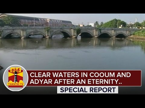 Clear Waters in Cooum and Adyar river after a Long time.. Will this Continue..? - ThanthI TV