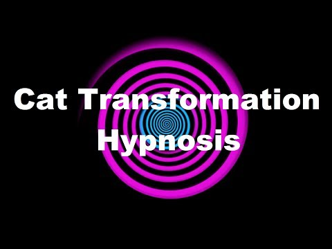 Cat Transformation Hypnosis