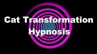 Cat Transformation Hypnosis