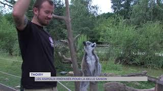 Thoiry : Les animaux préparés pour la belle saison
