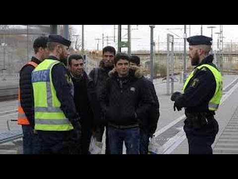 Svenska polisingripanden - Swedish Police Compilation (Best and Worst of) #3