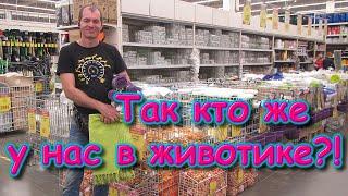 В городе - Второе УЗИ - пол ребенка. Покупки. Зарплата. Геодезия. (09.20г.) Семья Бровченко.