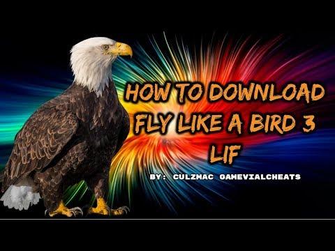 Dowloading Fly Like a Bird 3 and Lif 1