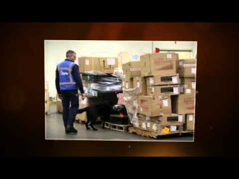Security | IT Freight | Shipping Transportation