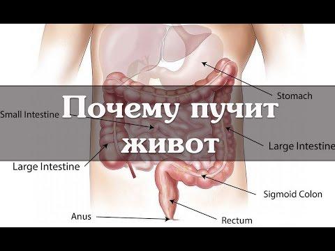 Вздутие живота, причины. Лечение, если пучит живот
