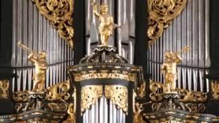 Sietze de Vries - Martini-orgelvespers, Weckmann Praeambulum