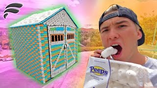 INSANE FORT MADE OF PEEPS MARSHMALLOWS!