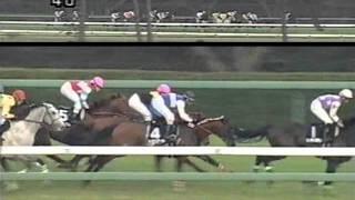 【ワイド中継】 2005年_岡部幸雄騎手引退記念 thumbnail