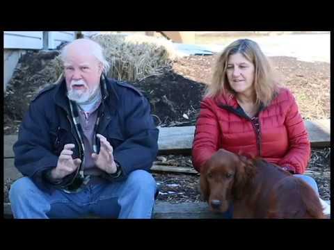 Download Interview 2: Irish Setter Puppy Customer