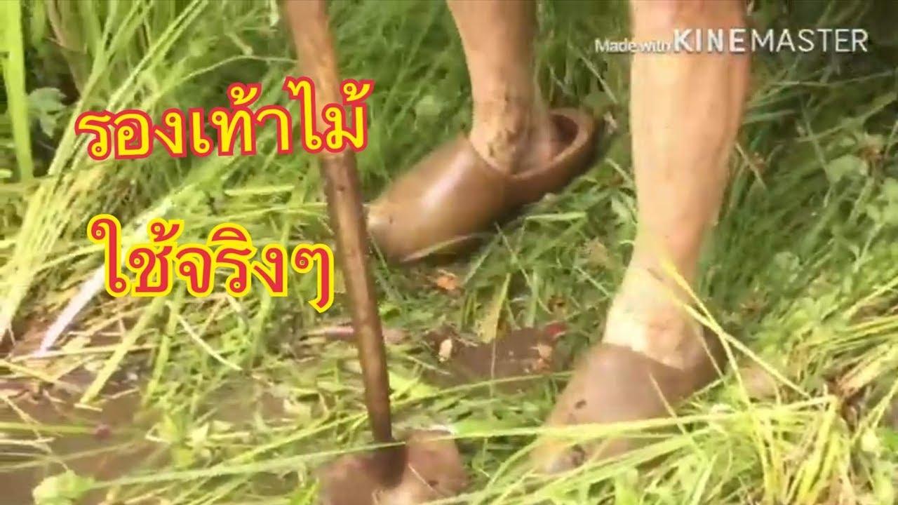 รองเท้าไม้ (klompen) สัญลักษณ์อย่างนึงของเนเธอร์แลนด์ : ยิ้มแบบไทย ในต่างแดน