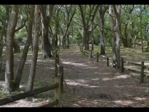 James Island, South Carolina : American Civil War Forts & Batteries