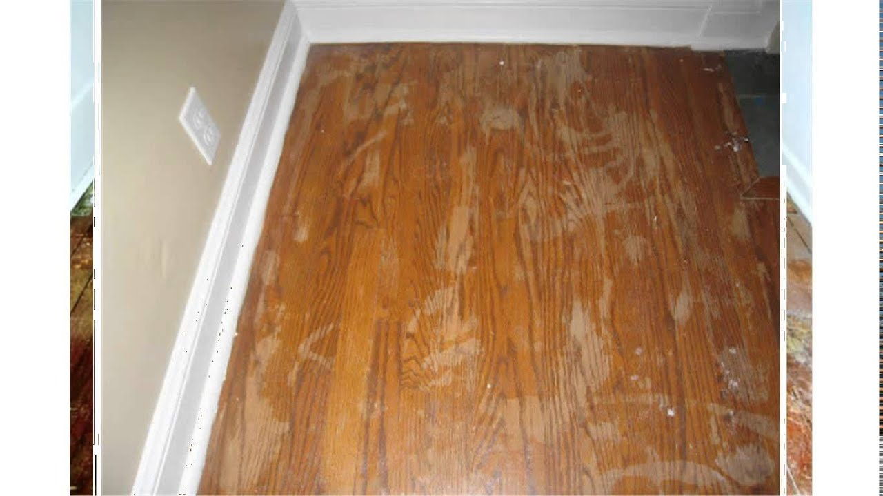 restoring hardwood floors - Restoring Hardwood Floors - YouTube