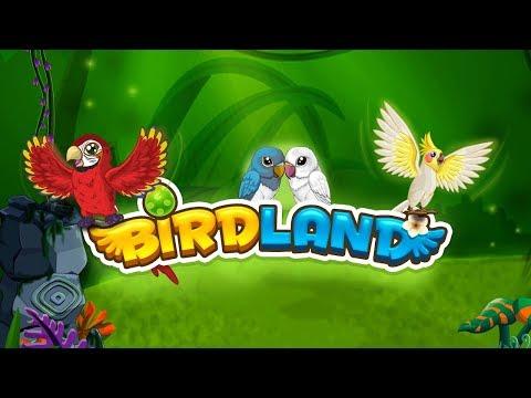 BREEDING - BIRDLAND PARADISE - EPISODE #1