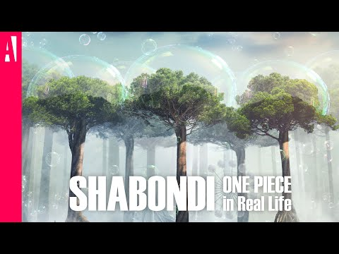 ONE PIECE - Shabondi Island - In Real Life - Live Action