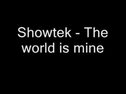 showtek    the world is mine