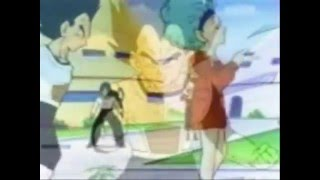 Everywhere-Vegeta and Bulma