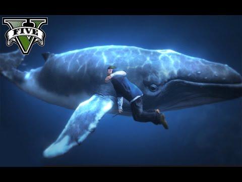 GTA V Online (PS4) - BALLENA AZUL EN GTA 5 !!LOL!! - Primeras impresiones! - NexxuzHD