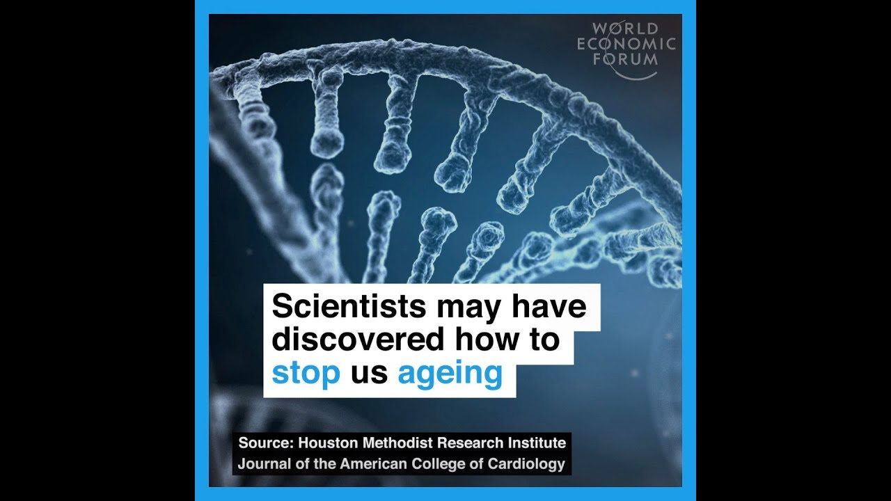 Scientists may have discovered how to stop us ageing