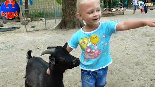✔ VLOG Девочка – Сюрприз Зоопарк Видео для детей Ярослава кормит животных Серия 6 ✔