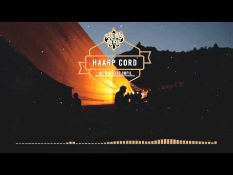 Haarp Coord - Nu mai sunt copil (Versuri/ScoalaStrazii)