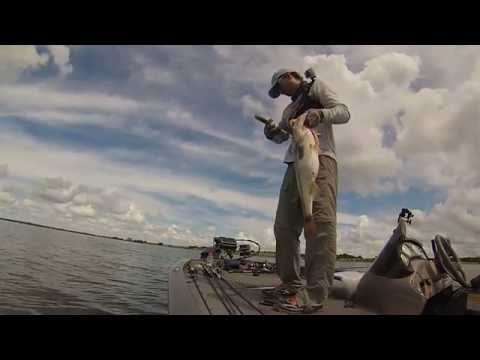 Big Bag Swimbait Pattern For Bass Fishing Florida in Summer