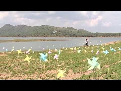 Ngon Doi Chong Chong - Bao Thy (HQ)