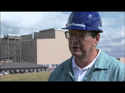 Sevestal | Job Hunter | MPB