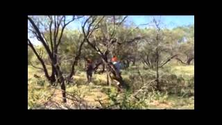 Ranch Boss & Trail Boss Team Up to Bring Down Monster Hog!