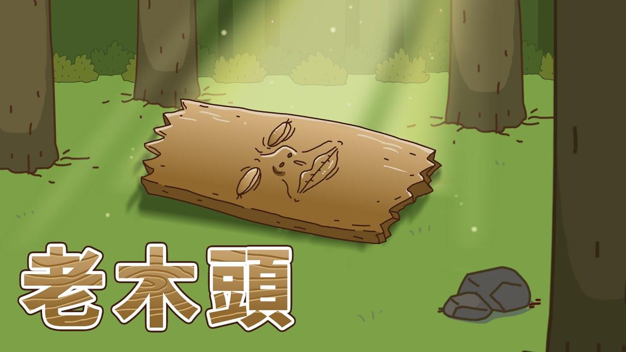 【床編故事】老木頭