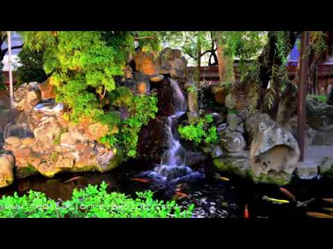 Japan Meditation: 8 HOURS Asian Meditation Music for Japanese Zen Garden Contemplation