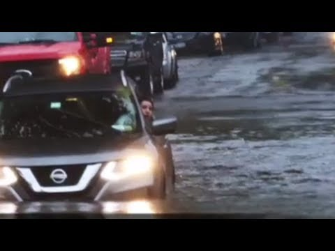 Rescued by the payloader: Woman escapes flooded car