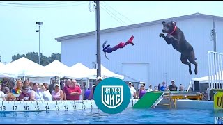 2012 Ukc Premier Dock Jumping - Ultimate Air Dogs