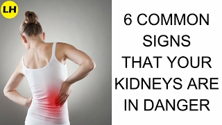 Gambar cover 6 Signs and Symptoms of Kidney Failure Mostly People Ignore