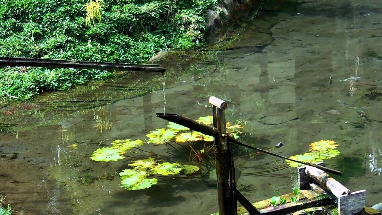 Fontaine zen en bambou youtube for Fontaine zen exterieure bambou