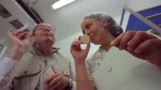 Cabécou du Périgord : le petit fromage au lait de chèvre produit en Périgord