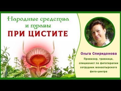 Народные средства и травы при цистите